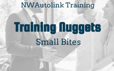 Training Nuggets – Small Bites